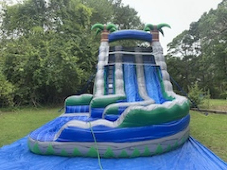 20ft Silver Iguana Water Slide